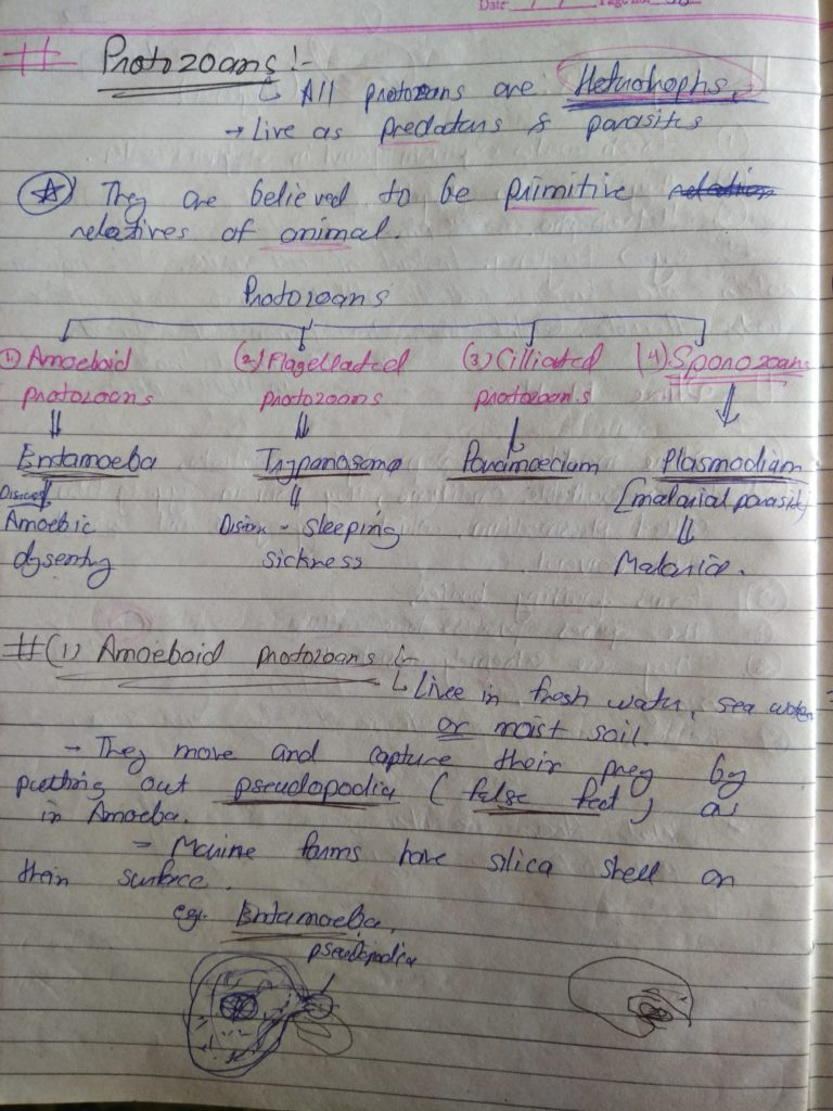 Chapter 2 Biological Classification14