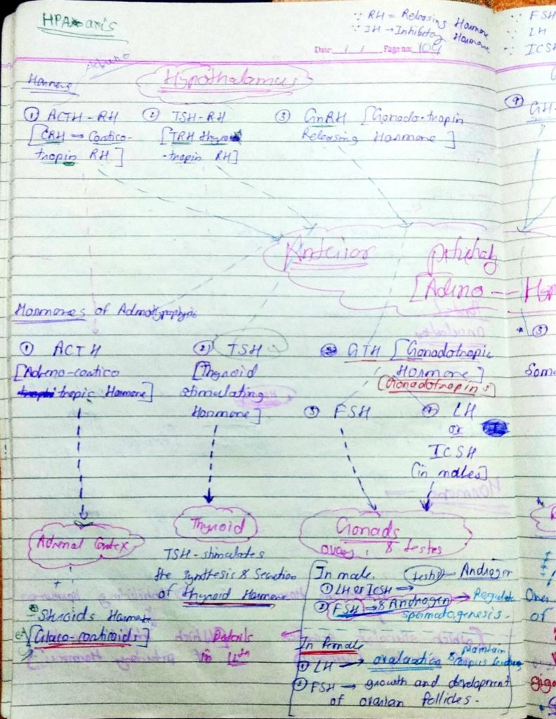 Chemical coordination and Integration part1 (4)