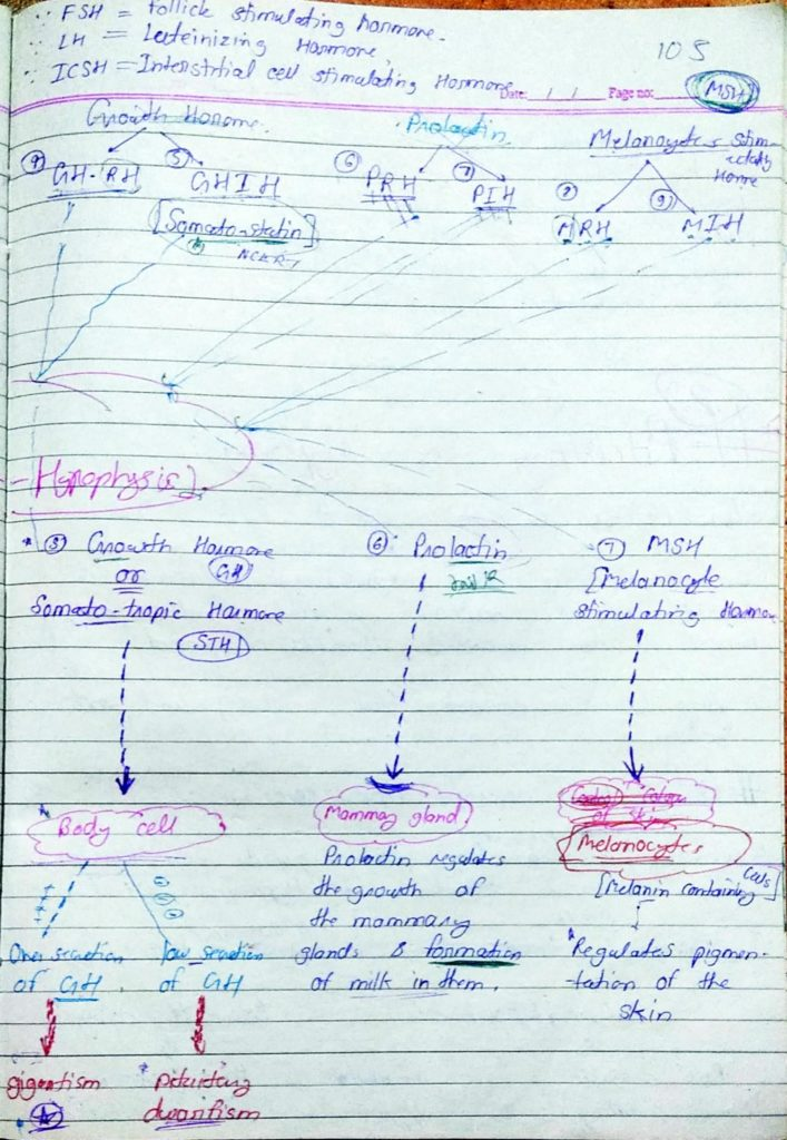 Chemical coordination and Integration part1 (5)